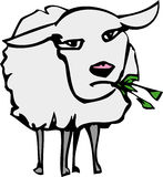 Sheep. An illustration of a sheep Stock Photography