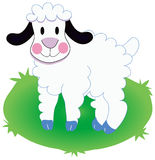 Sheep. Standing on grass background illustration Royalty Free Stock Photography