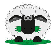 Sheep. A cartoon or illustration of a woolly sheep Stock Photography