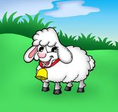 Sheep. Color illustration of sheep on meadow Stock Photography