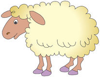 Sheep. Vectorial illustration of a sheep, isolated on a white background Royalty Free Stock Photography