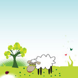 The sheep. Colorful illustration with green tree, sheep, small butterflies, ladybird and small clovers Stock Photography