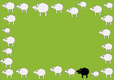 Sheep. Easter frame with black and white sheeps Royalty Free Stock Photography