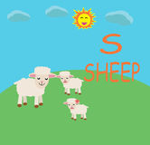 Sheep Alphabet fun cartoon. Sheep alphabet fun design for website, company, shirt, travel, industry,drawing book Royalty Free Stock Photo