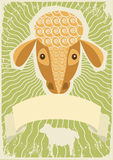 Sheep background for text. Royalty Free Stock Image