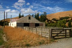 Sheep barn New Zealand Stock Images