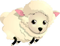 Sheep. Beautiful picture of a sheep on a white background Royalty Free Stock Photo
