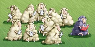 The sheep black law doesn`t use the jail cell. The sheep black law all the other white sheep use the jail cell Stock Photos