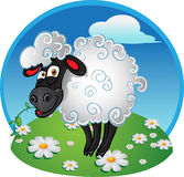 Sheep with blade of grass on color background royalty free stock image