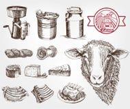 Sheep breeding Royalty Free Stock Image
