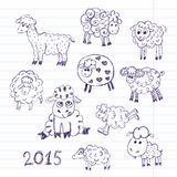 Sheep breeding. set of vector sketches Stock Images