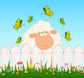 Sheep with butterfly. Cartoon smiling sheep with butterfly after a fence Stock Images