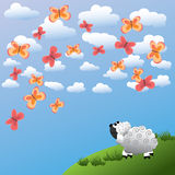 Sheep and butterfly. The sheep admires beautiful butterflies Royalty Free Stock Image