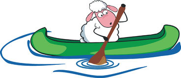 Sheep in canoe Royalty Free Stock Images