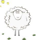 Sheep card Stock Image