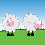 Sheep cartoon on a grass  Royalty Free Stock Photography
