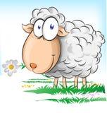Sheep cartoon. Happy sheep cartoon on  background Stock Photography