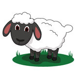 Sheep Cartoon Illustration. Cute sheep vector cartoon illustration Royalty Free Stock Photos