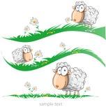 Sheep cartoon set on meadow Stock Image