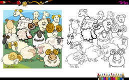 Sheep characters coloring book Royalty Free Stock Photography