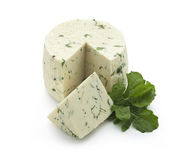 Sheep chees with Rucola Royalty Free Stock Photography