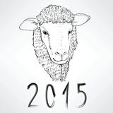 Sheep Chinese New Year. Black ink realistic sheep portrait drawing with 2015 text for Chinese New Year Stock Photos