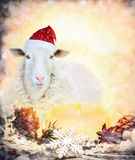 Sheep in Christmas Santa hat with candles Royalty Free Stock Images
