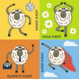 Sheep colorful cartoon concepts set. Vector. Royalty Free Stock Photography