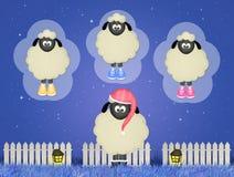 Sheep counting sheeps Royalty Free Stock Photos