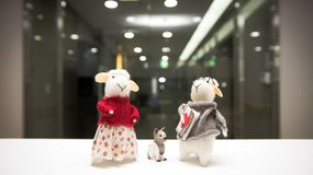 The sheep couple who wear clothes walking out with dog at night. Sheep couple, night background, white desk, dog model royalty free stock photography