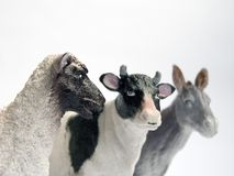 Sheep, cow and donkey Royalty Free Stock Images
