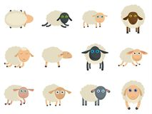 Sheep cute lamb farm iicons set vector isolated royalty free illustration