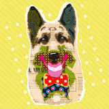 Sheep-dog. With bow tie on a yellow background Stock Images