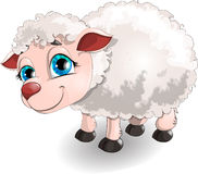 Sheep. Drawn on a white background stock illustration