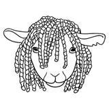 Sheep with dreadlocks Stock Image