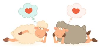 Sheep dreams about love Royalty Free Stock Photo