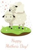 Sheep family Stock Photos