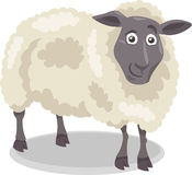 Sheep farm animal cartoon illustration Royalty Free Stock Photos