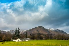 Sheep farm with a mountain backdrop. In the Lake District stock photography
