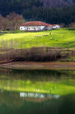 Sheep and a farmhouse. Landscape with a shepherd, some sheep and a farmhouse Royalty Free Stock Photos