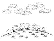 Free Sheep Feeding Grass On The Hill Graphic Black White Sketch Illustration Vector Stock Images - 163599914