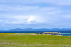 Sheep in the fieldf of Iona in the Inner Hebrides, Scotland. Iona is a small island in the Inner Hebrides off the Ross of Mull on the western coast of Scotland royalty free stock photography