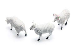 Sheep Figurines Stock Image