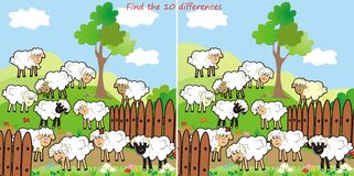 Sheep-find 10 differences. Find ten differences in the pictures - sheep Royalty Free Stock Photography