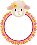 Sheep with Flower Frame Stock Images