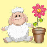 Sheep with flower Stock Photos