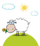 Sheep With Flower In Mouth On A Sunny Day Stock Photo