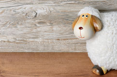 Sheep in front of wooden background. With Copy space Stock Photos