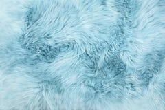 Sheep fur Blue colored sheepskin rug background texture. Sheep fur. Blue colored sheepskin rug background. Wool texture stock photography
