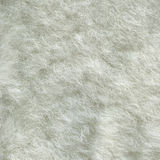 Sheep fur Royalty Free Stock Photography